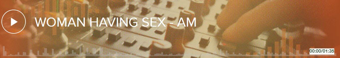 The Sound Of Gay Sex #2